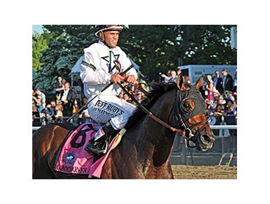 "Commissioner<br><a target=""blank"" href=""http://photos.bloodhorse.com/TripleCrown/2014-Triple-Crown/Belmont-Stakes-146/i-LjxgZqp"">Order This Photo</a>"
