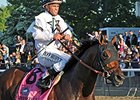 "Commissioner <br><a target=""blank"" href=""http://photos.bloodhorse.com/TripleCrown/2014-Triple-Crown/Belmont-Stakes-146/i-LjxgZqp"">Order This Photo</a>"