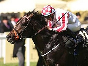 Darley Buys Sprint Star Slade Power