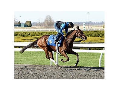 Big Bazinga's morning work at Keeneland April 6.
