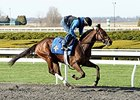 Blue Grass Contenders in Keeneland Workouts