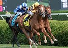 Wise Dan wins the Bernard Baruch Stakes.