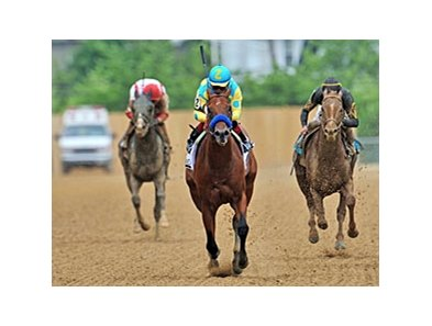 "Zee Bros<br><a target=""blank"" href=""http://photos.bloodhorse.com/AtTheRaces-1/at-the-races-2013/27257665_QgCqdh#!i=2519209795&k=35KVBDm"">Order This Photo</a>"
