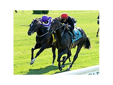 "Mr Speaker (right) gets through on the inside to win the Belmont Derby Invitational.<br><a target=""blank"" href=""http://photos.bloodhorse.com/AtTheRaces-1/At-the-Races-2014/i-7MhCVrK"">Order This Photo</a>"