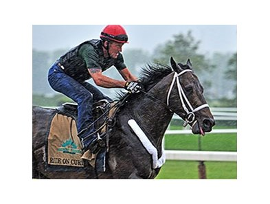 "Ride On Curlin is scheduled to make his 12th career start in the Belmont Stakes.<br><a target=""blank"" href=""http://photos.bloodhorse.com/TripleCrown/2014-Triple-Crown/Belmont-Stakes-146/i-9xbWVND"">Order This Photo</a>"