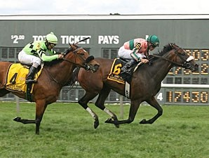 Somali Lemonade faces nine in the Gallorette Handicap.