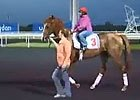 Dubai World Cup: Dale Romans - Dullahan