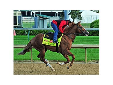 "Pablo Del Monte <br><a target=""blank"" href=""http://photos.bloodhorse.com/TripleCrown/2014-Triple-Crown/Kentucky-Derby-Workouts/i-MMvNj5c"">Order This Photo</a>"
