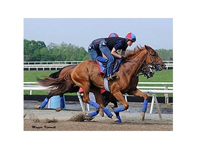 Ring Weekend worked 6 furlongs in 1:13 1/5 at Fair Hill on May 10.