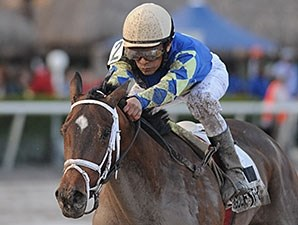 Candy Kitty won the 2013 Wait a While Stakes.