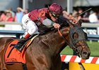 Last Gunfighter has won six in a row, including the May 17 Pimlico Special.