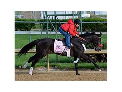 "Kiss Moon<br><a target=""blank"" href=""http://photos.bloodhorse.com/TripleCrown/2014-Triple-Crown/Kentucky-Derby-Workouts/i-LzmhHJP"">Order This Photo</a>"