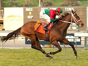 Jeranimo won the San Gabriel Stakes in 2010 and 2013 (shown).