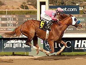 Scherzinger gets up late to win the Santa Monica Stakes.