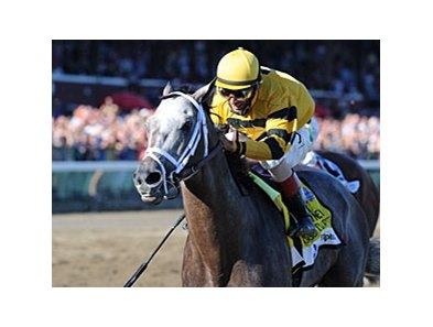 "Cross Traffic<br><a target=""blank"" href=""http://photos.bloodhorse.com/AtTheRaces-1/at-the-races-2013/27257665_QgCqdh#!i=2676065045&k=TZXXbjG"">Order This Photo</a>"