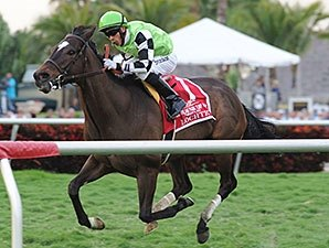 Lochte Looks for First California Stakes