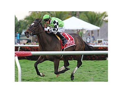 Lochte won the Gulfstream Park Turf Handicap by 2 3/4 lengths on Feb 9.