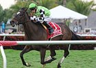 "Lochte carries highweight of 123 pounds in the Appleton Stakes.<br><a target=""blank"" href=""http://photos.bloodhorse.com/AtTheRaces-1/At-the-Races-2014/35724761_2vdnSX#!i=3067652094&k=3FzWn2K"">Order This Photo</a>"