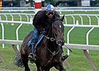 Cozmic One training at Saratoga