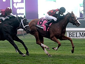 Testa Rossi won the 2013 Miss Grillo Stakes.