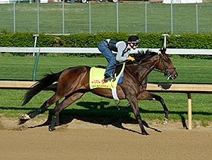 Busy Saturday for Derby, Oaks Horses