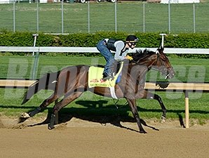 Big Bazinga worked at Churchill Downs on April 26, 2014.