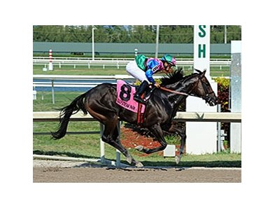 "Itsmyluckyday wins the 2014 Best of the Rest Stakes. <br><a target=""blank""http://photos.bloodhorse.com/AtTheRaces-1/At-the-Races-2014/i-bDsGtnd"">Order This Photo</a>"
