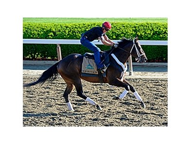 "Ride On Curlin<br><a target=""blank"" href=""http://photos.bloodhorse.com/TripleCrown/2014-Triple-Crown/Belmont-Stakes-146/i-qrS5GQC"">Order This Photo</a>"