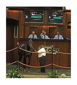 Hip No. 1121, a colt by Quality Road, topped the final session at $390,000.