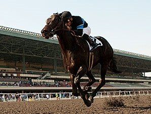 Champion Shared Belief Unlikely to Make Lewis