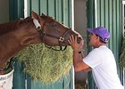 California Chrome and Willie Delgado