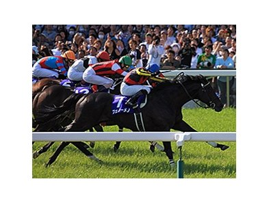 Fenomeno wins the Tenno Sho Spring.