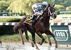"Daredevil romps to victory in the Champagne Stakes.<br><a target=""blank"" href=""http://photos.bloodhorse.com/AtTheRaces-1/At-the-Races-2014/i-f3mTSH5"">Order This Photo</a>"