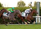 Danny Boy (#4) finishes second to Lawn Ranger in the Dixiana Bourbon Stakes.