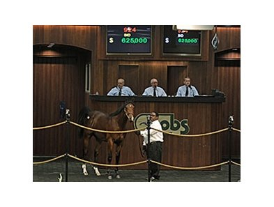 Hip No. 924, a colt by Indian Charlie consigned by de Meric Sales, agent, sold for $625,000 to top the last session.