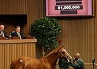 Hip 55 sold for $1 million at the April 2-year-olds in training sale.