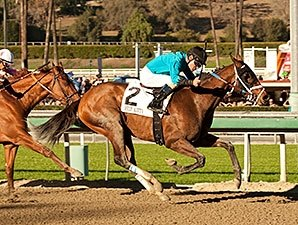 Grade I Winner Heir Kitty Tops Del Mar Sale