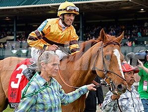 Wise Dan after winning the Maker's 46 Mile at Keeneland.