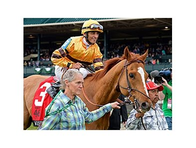 "Wise Dan after winning the Maker's 46 Mile at Keeneland.<br><a target=""blank"" href=""http://photos.bloodhorse.com/AtTheRaces-1/At-the-Races-2014/35724761_2vdnSX#!i=3174033438&k=8mDKcS9"">Order This Photo</a>"