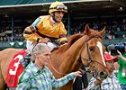 "Wise Dan<br><a target=""blank"" href=""http://photos.bloodhorse.com/AtTheRaces-1/At-the-Races-2014/35724761_2vdnSX#!i=3174033438&k=8mDKcS9"">Order This Photo</a>"
