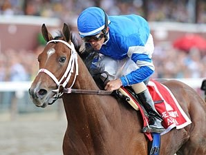 Alpha Definite for Travers Off Jim Dandy Win