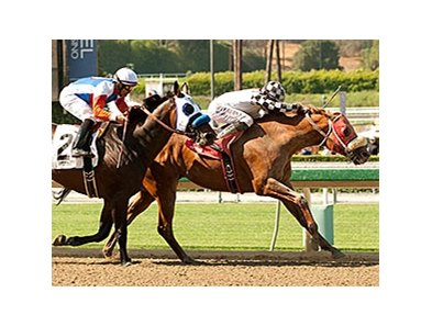 Clubhouse Ride gets through on the inside to win the Californian Stakes over favorite Fury Kapcori.