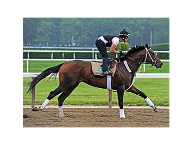 Commanding Curve