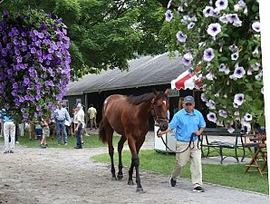 Horses to Watch at F-T Saratoga Sale, Day 1