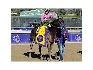 "New Year's Day <br><a target=""blank"" href=""http://photos.bloodhorse.com/BreedersCup/2013-Breeders-Cup/Juvenile/33149927_s6DS8h#!i=2888277508&k=fwb3DD9"">Order This Photo</a>"