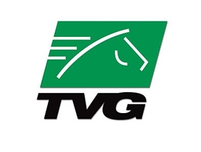 TVG: Handle up, revenue down in 2007.