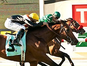 Enterprising (outside) and Argyle Cut finished a neck apart in the Oceanside.
