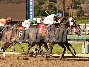 Sahara Sky faces 6 in the Triple Bend.