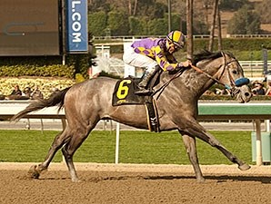 Kobe's Back wins the the San Vicente Stakes.