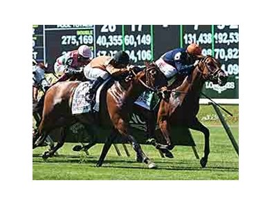 "Coffee Clique (right) gets the win the Just A Game over Strahnaver. <br><a target=""blank"" href=""http://photos.bloodhorse.com/AtTheRaces-1/At-the-Races-2014/i-22FMz4P"">Order This Photo</a>"
